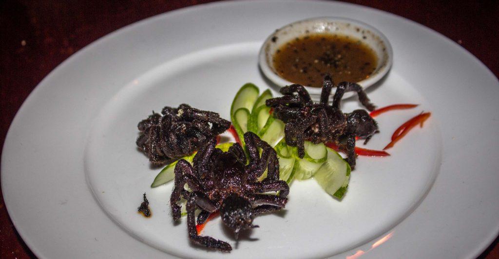 crispy tarantula eaten in cambodia