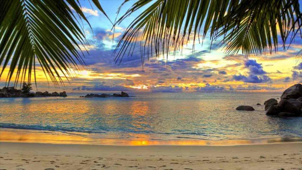 Goa beach scene during sunset