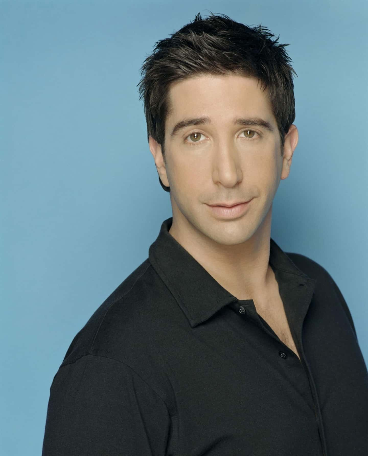 young photo of david schwimmer or ross geller