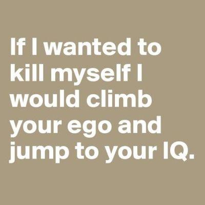 IQ Of A Stone