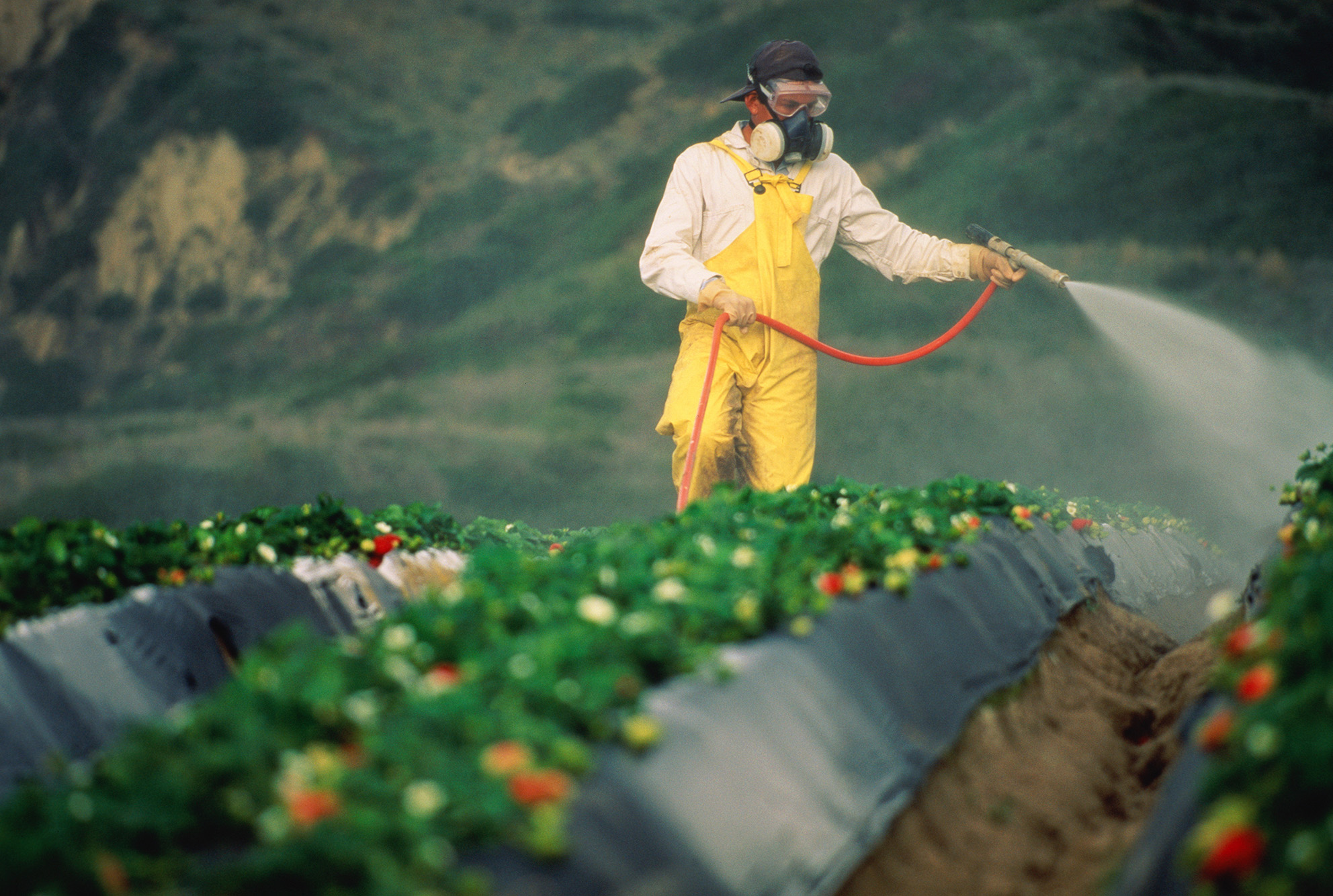 Pesticides banned in some countries