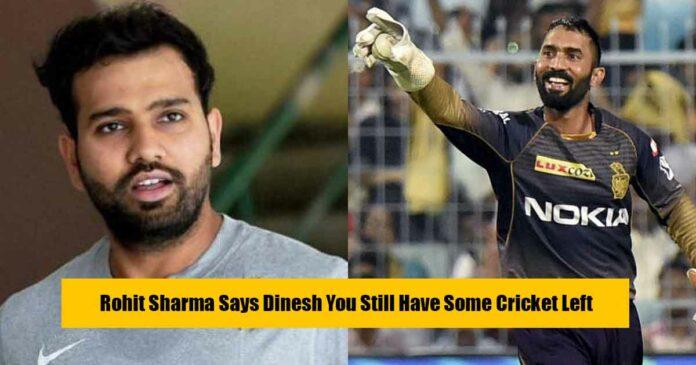 dinesh-rohit-cricket