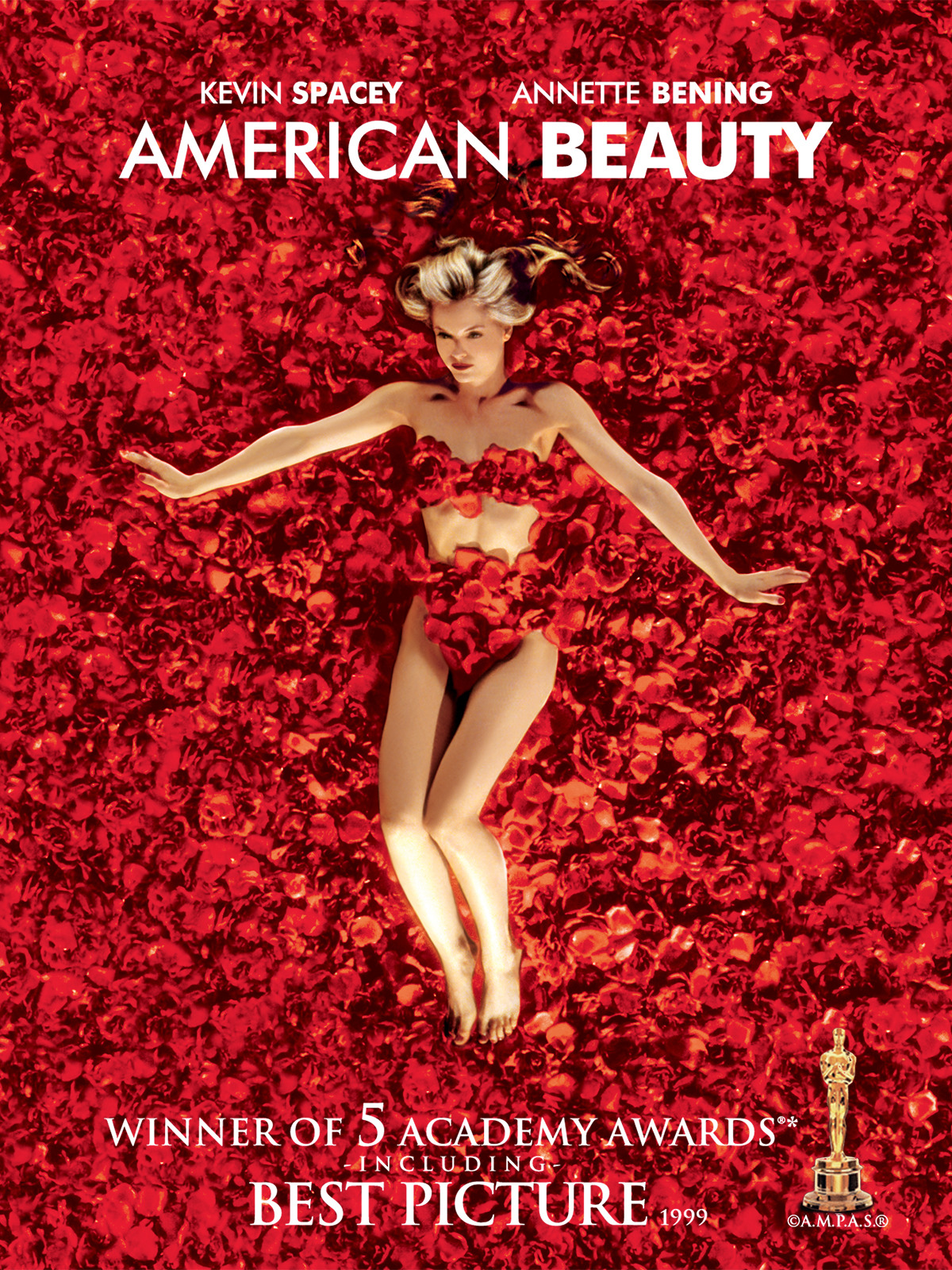 american beauty dubbed in hindi
