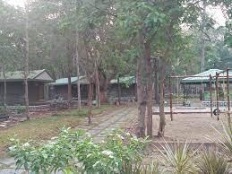 bairluty jungle camp