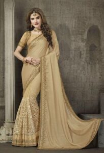 Poses for girls in saree