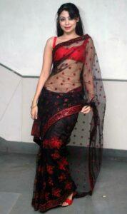 Transparent saree poses