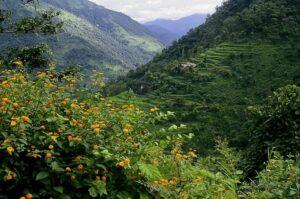 kiarighat shimla tourist places
